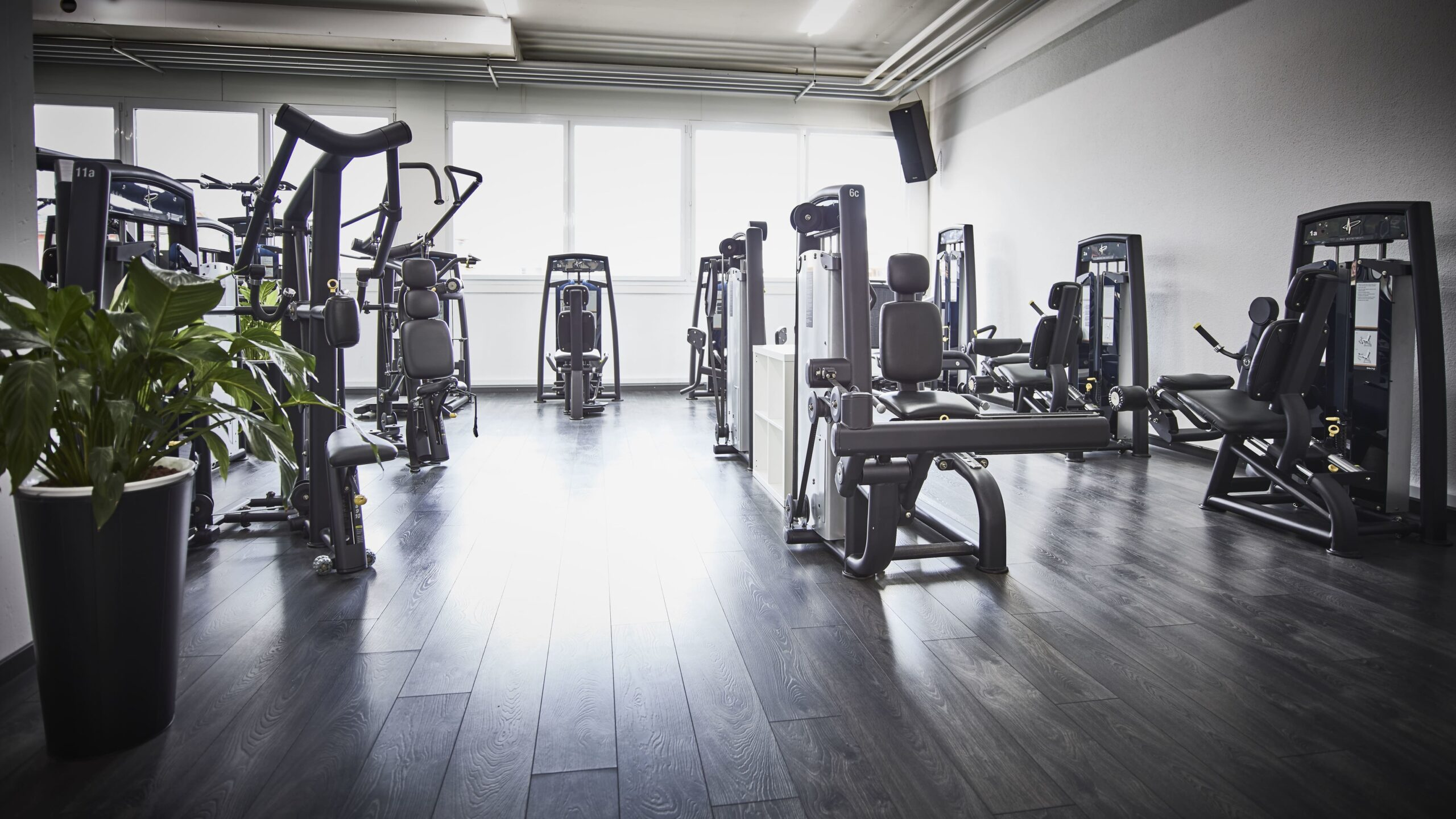 update Fitness Buchs_Kraft_Tag der offenen Tür
