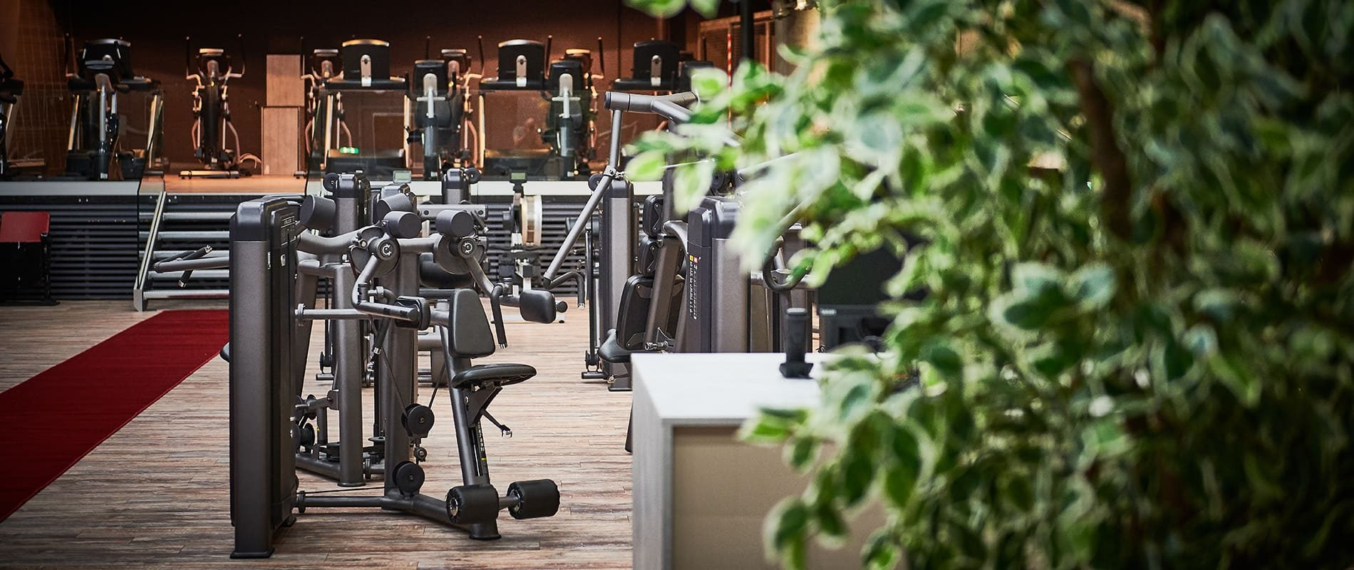 update Fitness Basel Gundeli - Kraftbereich